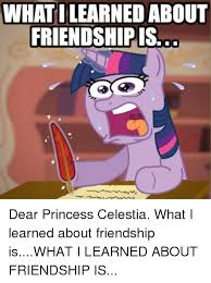 Princess Celestia Meme - what ilearned about friendship is dear princess celestia what i