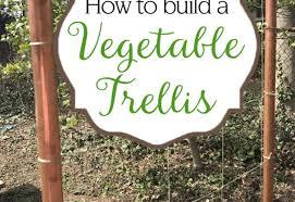 pergola arbor ideas beautiful build trellis best 25 arbor ideas