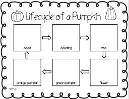 pumpkin inquiry 1rst grade google search science pinterest