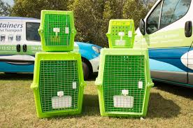belgian shepherd townsville crate info u2013 domestic and international pet transport dogtainers