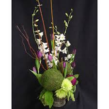 wholesale flowers and supplies moss balls w tulips dendrobiums spider mums wholesale flowers