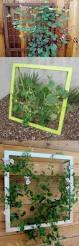 Pictures Of Trellises And Arbors 518 Best Garden Arbors U0026 Trellises Images On Pinterest Garden