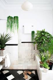 bathroom nice window between good bathroom plants on edge