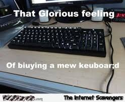 Meme Keyboard - the glorious feeling of buying a new keyboard funny meme pmslweb