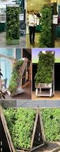 green walls vertical landscape architects