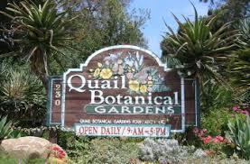 Quail Botanical Gardens Free Tuesday San Diego Botanic Garden Tourguidetim Reveals San Diego
