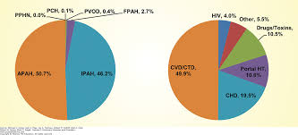 pulmonary arterial hypertension fishman u0027s pulmonary diseases and