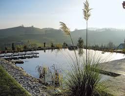Natural Swimming Pool 36 Best Natural Swimming Pools Images On Pinterest Natural Pools
