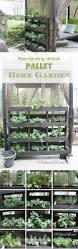 19 inspiring diy pallet planter ideas pallet herb gardens herbs