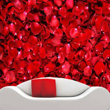 wall mural modern promotion shop for promotional wall mural modern 3d customized size red rose wall mural modern art painting mural wallpaper for living room flower photo wall paper