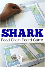 the 25 best food chain worksheet ideas on pinterest food chains
