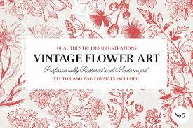 540 high quality vintage illustrations u2013 flowers nautical and