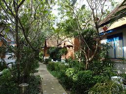 heron thailand koh tao part 1