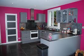 cuisine gris et cuisine avec murs roses et meubles gris decoration