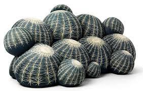 linea canapé cactus canape by baleri italia modern sofas linea inc modern