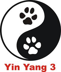 Schlafzimmer Yin Yang Yin Yang 3 Pfoten Tatzen Auto Aufkleber Autoaufkleber Ebay