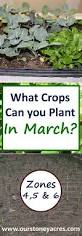 Weather Zones For Gardening - getting your garden spring weather ready march planting guide