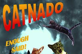 Sharknado Meme - best use of the sharknado meme to date