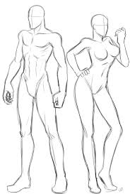 Male Body Anatomy Organs Tag How To Draw Male Body Anatomy Human Anatomy Diagram Art