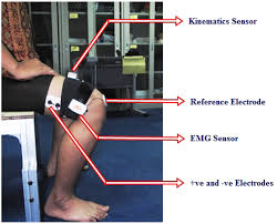 sensors free full text a fuzzy controller for lower limb