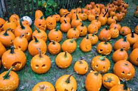canap pumpkin canal o ween experience yardley