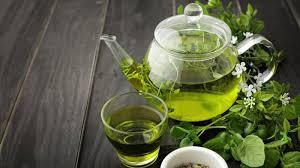 Teh Hijau manfaatnya banyak tapi jangan minum teh hijau berlebihan agar tak