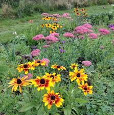 nightingale garden