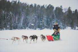 dog sledding explore northwest ontario explore northwest ontario