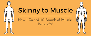 skinny to muscle how i gained 40 pounds of muscle being 6 u00278