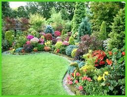Garden Club Ideas Small Shade Garden Ideas Best Idea Garden