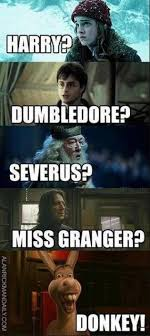 Hilarious Harry Potter Memes - harry potter funny 05