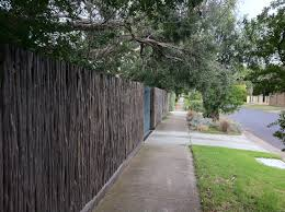 tea tree as a fence material for privacy to a front yard