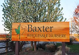 baxter wholesale nursery who we are