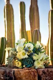 wedding flowers tucson 28 best tucson az weddings images on tucson arizona