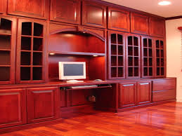 house design pictures in usa photos hgtv organized closet with purple curtains arafen