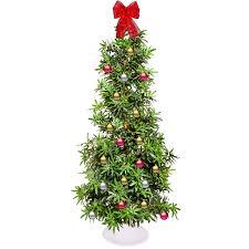 cristmas tree week in walmart s themed christmas tree looping pot