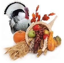 the history of turkey turkey facts