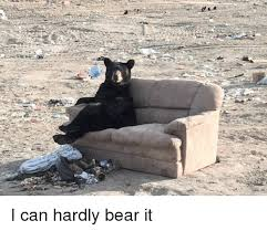 Bear Memes - bear and bear meme on esmemes com