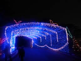 Trail Of Lights Austin Texas 11 Reasons Why The Austin Trail Of Lights Is The Best Holiday