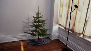 3 foot tree really completes incredibly depressing