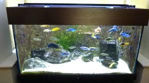 24 aquarium light bulb all glass aquarium light all glass aquarium black 24 fluorescent