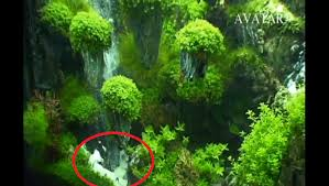 Aquascape Aquarium Designs Is That An Underwater Waterfall Yes Fpsbutest