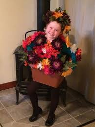 Pot Halloween Costumes 25 Flower Pot Costume Ideas Gumball