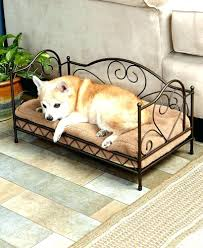 Pet Canopy Bed Canopy Beds For Dogs Bed Made From An End Table