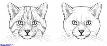 simple cat face drawing face hello kitty how to draw hello kitty