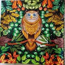 Mandala Owls Secret Garden Mandala De Corujas Jardim Secreto Owl Coloring Ideas
