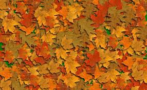 orange backgrounds image wallpaper cave fall background pics group 52
