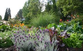 Landscaping Portland Oregon by Landscaping Ecobiz