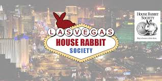Home Design Audio Video Las Vegas Las Vegas House Rabbit Sanctuary Home Facebook