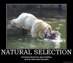natural selection is win gallery ebaum s world